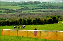 Point-to-Point, Ireland