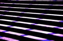Purple staircase, Sydney Opera House, Australia