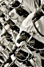 Saddle racks ~ Tackroom, Spanish Riding School, Vienna, Austria