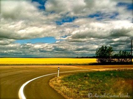 A curve in the prairie road, Alberta ...