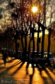 Taken in Barcelona near Port Olimpic, February 2012. I simply love the dancing shadows on the sidewalk.