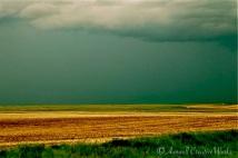 Storm on the horizon, near Rowley, Alberta