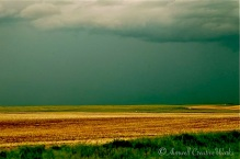 Storm on the horizon, near Rowley, Alberta