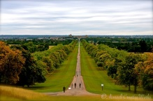 Long Walk, Windsor Great Park