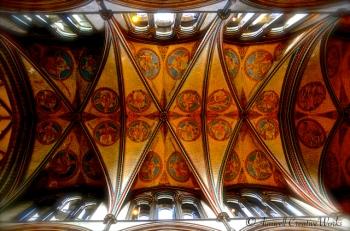 Ceiling Salisbury