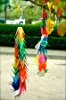 Paper cranes ... the park is filled with them
