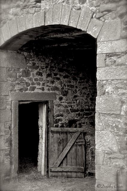 Stable Door