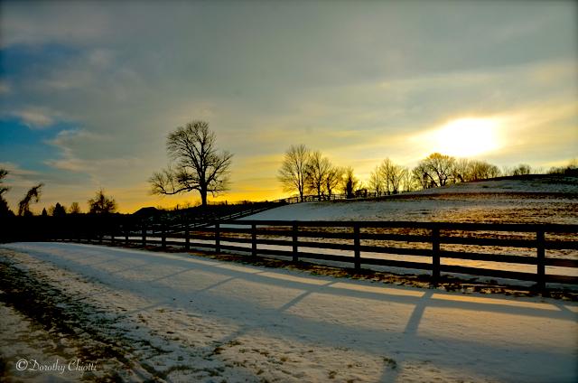 Dance of Winter Light