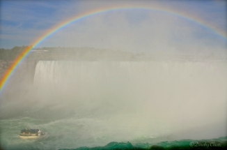 Niagara Fun