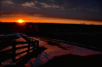 Transient Sun