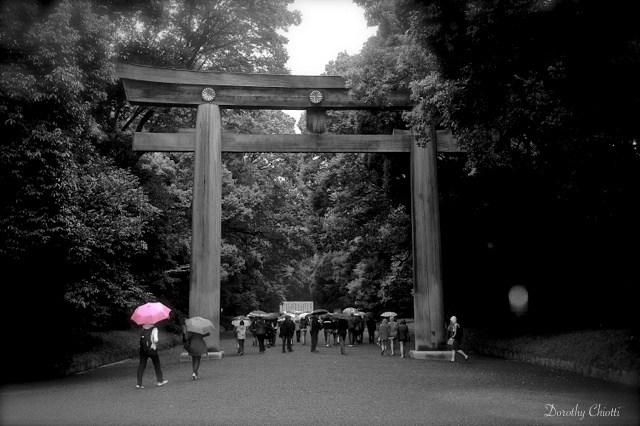 Giant wooden Torii gate to Meiji Jingku Shrine, Tokyo.