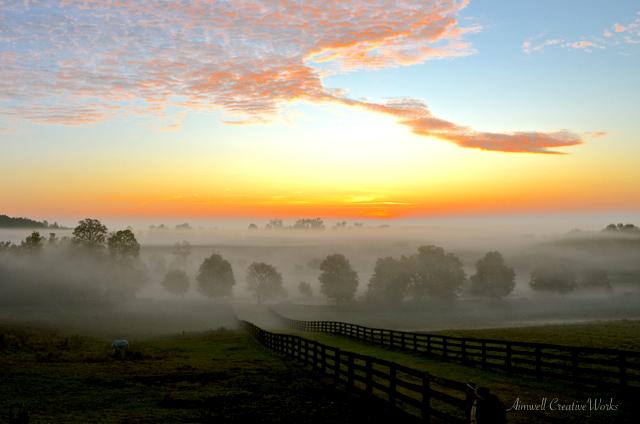 Dufferin Sunrise