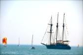 Down Sail