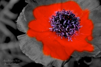 Remembrance II