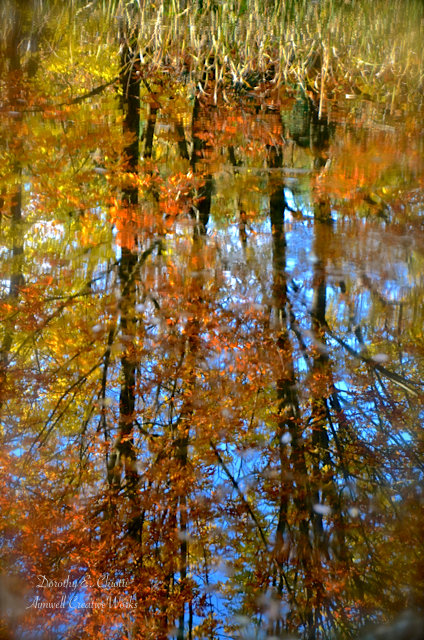 Autumn's Reflection