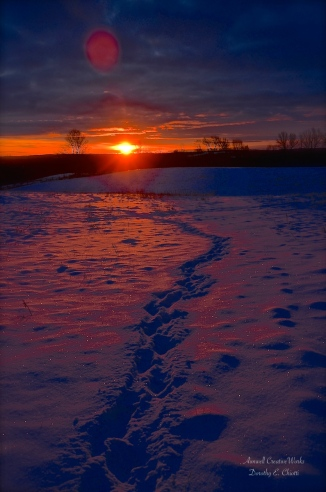 Snow Beautiful 1200 WM