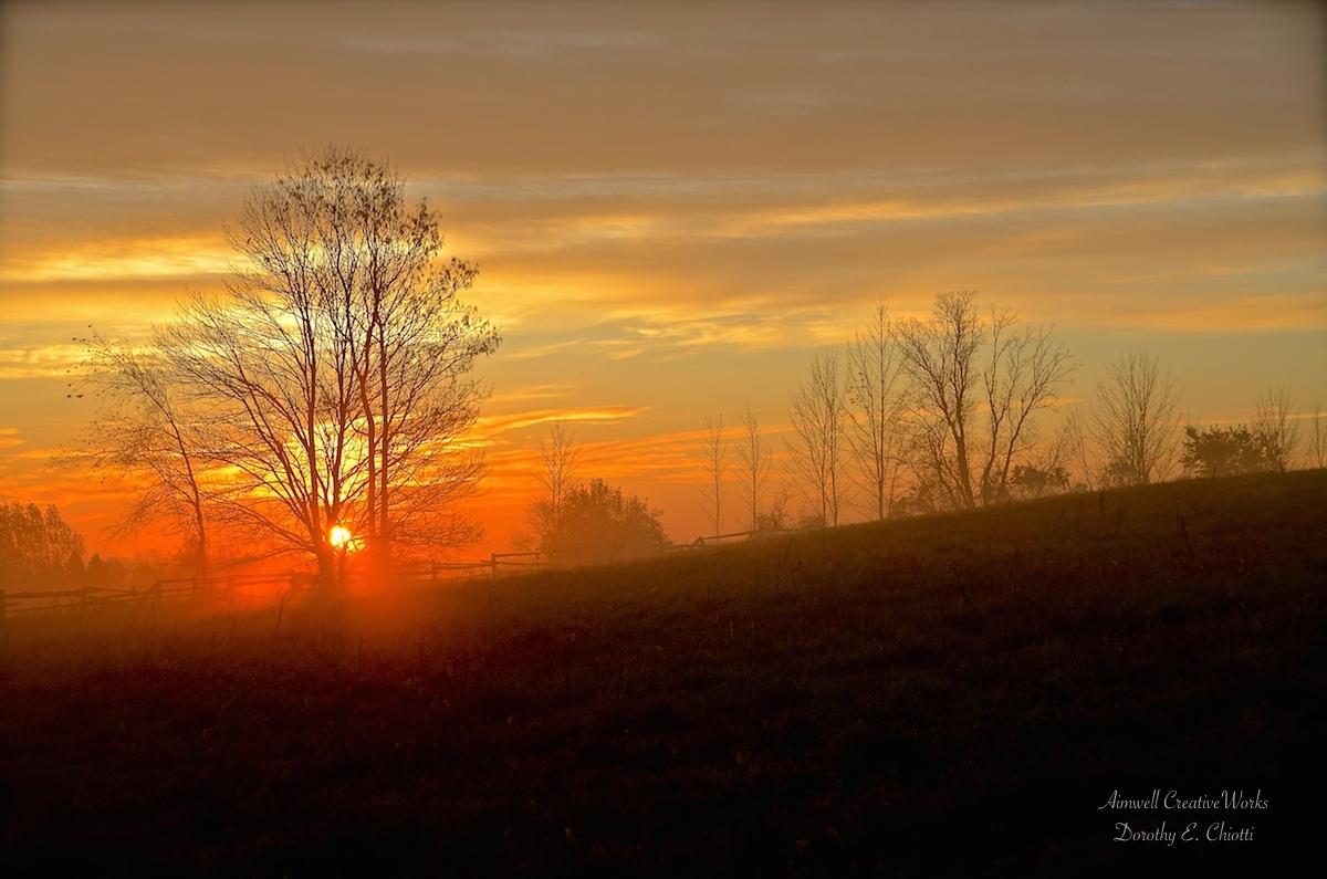 Sunshine 1200 WM