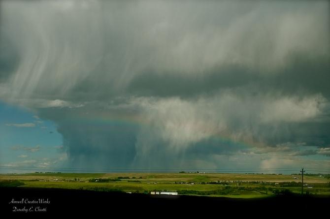 Prairie Storm I 1200 WM