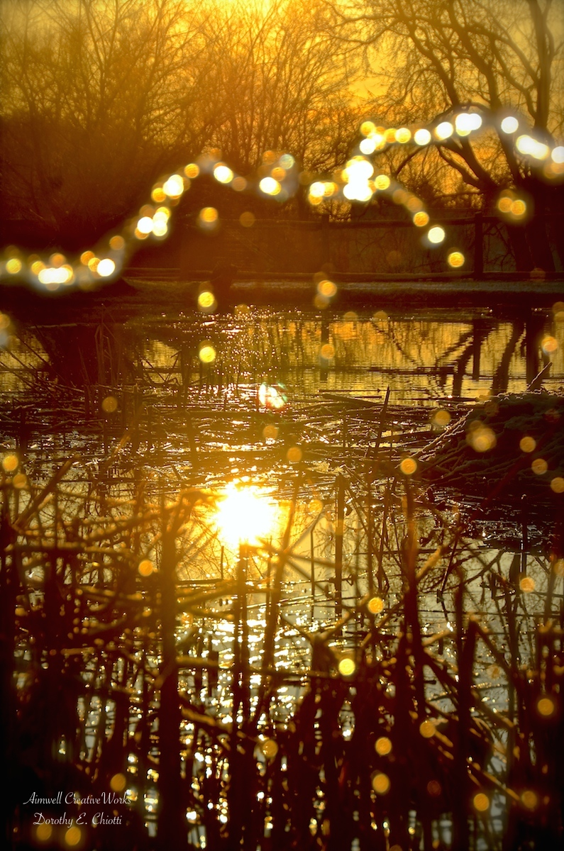 Golden Pond 1200 WM